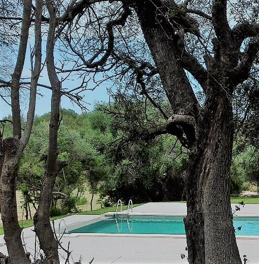 foto piscina (3)